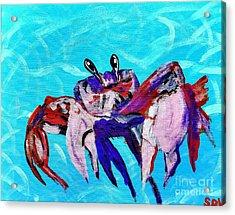 Happy Little Crab  Acrylic Print by Scott D Van Osdol