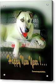Happy New Year Art  Acrylic Print