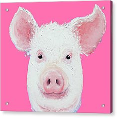 Happy Pig Portrait Acrylic Print by Jan Matson