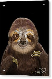Acrylic Print featuring the mixed media Happy Three Toe Sloth by Thomas J Herring