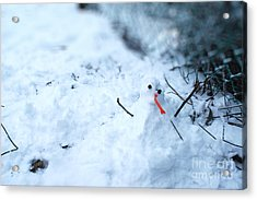 Happy Snow Man Acrylic Print by Sun Wu