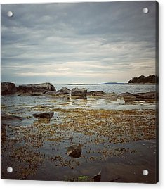Acrylic Print featuring the photograph Harbor by Karen Stahlros