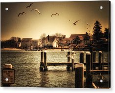 Harbor View Acrylic Print by Gina Cormier