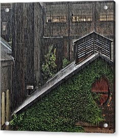 Hard Rain Acrylic Print
