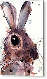 Hare Acrylic Print by Dawn Derman