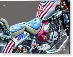 Acrylic Print featuring the photograph Harley by Charuhas Images