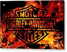 Harley Davidson Logo Flames Acrylic Print by Randy Steele