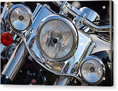 Harley Full Frontal Acrylic Print by Anthony Robinson