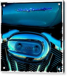 Harley Sportster 1200 Acrylic Print by David Patterson