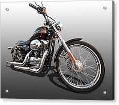 Harley Sportster Xl1200 Custom Acrylic Print