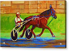 Harness Racing At Bluebonnets Acrylic Print by Carole Spandau