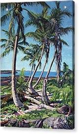 Harpster Island Acrylic Print