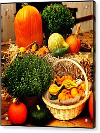 Harvest Acrylic Print by Bill Cannon
