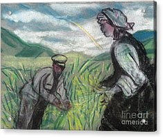 Harvest Acrylic Print by Duygu Kivanc