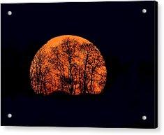 Harvest  Moon Rising Acrylic Print