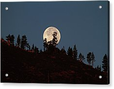 Harvest Moonset Acrylic Print by Donna Kennedy