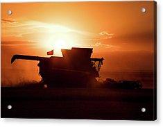 Harvest Silhouette Acrylic Print by Todd Klassy