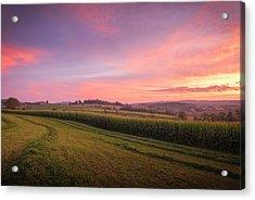 Harvest Sky Acrylic Print