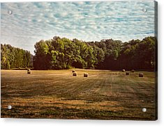Harvest Time Acrylic Print