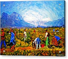 Harvest Time Acrylic Print by Michael Durst