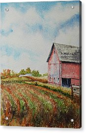 Harvest Time Acrylic Print by Mike Yazel