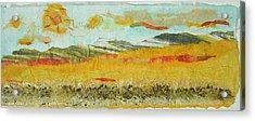 Harvest Time On The Prairies Acrylic Print by Naomi Gerrard