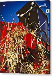 Harvesting Acrylic Print by Meirion Matthias