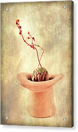 Acrylic Print featuring the photograph Hat And Echeveria  by Catherine Lau