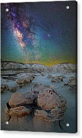 Hatched By The Stars Acrylic Print