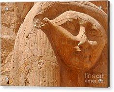 Hathor Acrylic Print by Stevyn Llewellyn