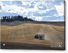 Hauling The Harvest From The Fields. Acrylic Print