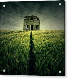 Haunted House Acrylic Print by Zoltan Toth