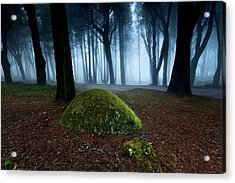 Acrylic Print featuring the photograph Haunting by Jorge Maia