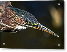 Have A Great Weekend. Happy Acrylic Print
