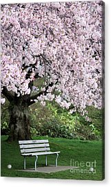 Acrylic Print featuring the photograph Have A Seat by Victor K
