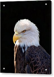 Acrylic Print featuring the photograph Have My Eye On You Two by Ken Frischkorn