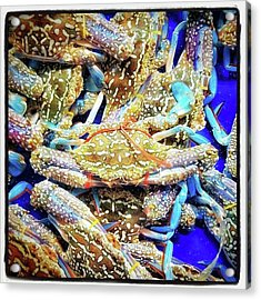 Acrylic Print featuring the photograph Having A Crabby Trip. But In A Good by Mr Photojimsf