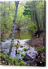Haw Creek Acrylic Print by Marty Koch