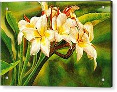 Hawaii Beauty Acrylic Print