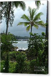 Hawaii Acrylic Print by Garnett  Jaeger