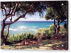 Acrylic Print featuring the photograph Hawaii by Lori Mellen-Pagliaro