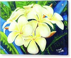 Hawaii Tropical Plumeria #158 Acrylic Print by Donald k Hall