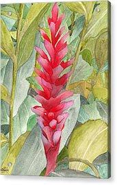 Hawaiian Beauty Acrylic Print