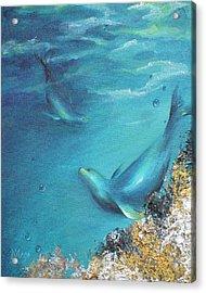 Acrylic Print featuring the painting Hawaiian Monk Seals by Dina Dargo