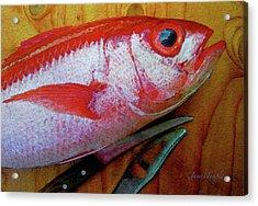 Hawaiian Onaga Digital Watercolor Acrylic Print