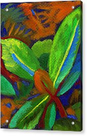 Hawaiian Plant 2 Acrylic Print