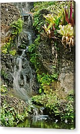 Hawaiian Waterfall Acrylic Print