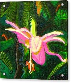 Hawaiian Wildflower Acrylic Print by Angela Annas