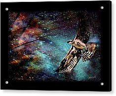 Hawk At Night Acrylic Print by YoMamaBird Rhonda