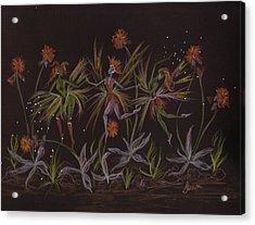 Hawkweed Dance Acrylic Print by Dawn Fairies